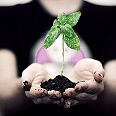 Ecologie : la peur du changement